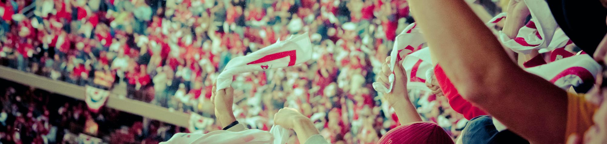 Sports, A Fan-Focused Business